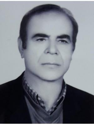 Bahram Taheri Dolat Abadi